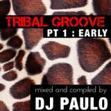 DJ PAULO - TRIBAL GROOVE - Pt 1 (EARLY) Spring 2018