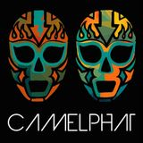 CamelPhat - Tribute Mix