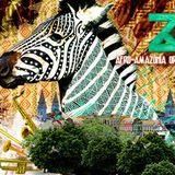 Radio Mukambo 145 - Le beat du zèbre amazonien