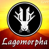 Lagomorpha (LiVE @ AZFC17)