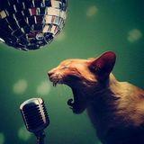 Singing 「karaoke」 while driving