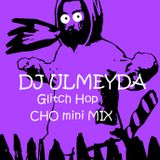 DJ ULMEYDA (TEAM BONER) - Glitch Hop  CHO mini MIX
