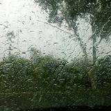 Wie das Wetter