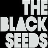 Sunny Side Up (015: 31/5/12) with The Black Seeds