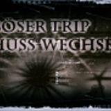 Böser Trip - Schusswechsel (Timao Remix)