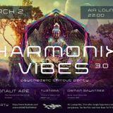 Harmonix Vibes
