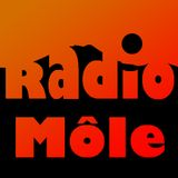 Libre antenne Radio Môle Halloween 31/10/14