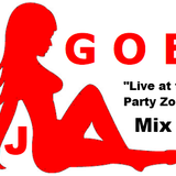 DJ GOE - Live at the Party Zone Mix 1