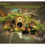 Dj Szeka - Welcome to SzekaLand (promo mix)
