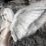Angels of Light vs Angels of Dark - Set 1 - Angels of Light
