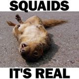 SQUAIDS - It's Real