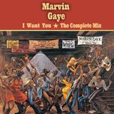 Marvin Gaye 〜 I Want You / The Complete Mix 〜