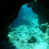 Deep Inside the Den 018