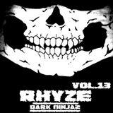 RHYZE: DARK NINJAZ | VOL.13 - The Lost DubZ