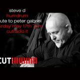 Steve D - Peter Gabriel Special on Cutradio (17/05/2014)