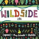 Wildside Festival 2016 - Birgit&Bier x Burg Schnabel x IPSE Schappo Klack Showcase Roth DJ Set