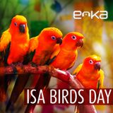 DJ EOKA - 08.2.2014  // Isabelle Birds Day