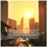 DJ T-REX - Sunrise Roundups