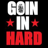 Sebăştinaş - Goin in Hard mix