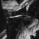 Blackened Disco Twenty Five – A Dear Girl Called Wendy