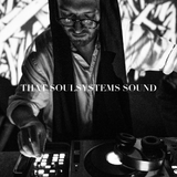 THAT SOULSYSTEMS SOUND