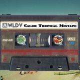 WLDV - We Love Dolce Vita - Mixtape N.4: Calor Tropical
