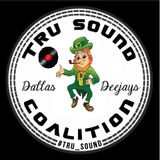 2014 DALLAS St. PAtty's MIX - DJ DnR