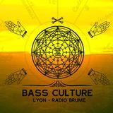 Bass Culture Lyon S09ep11a - ShitWalker