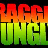 ragga jungle mix by wanti