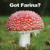 Mark Farina-Mushroom Jazz Promo djmix-Spring 2010