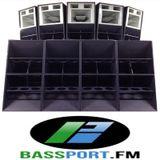 Stand Alone Complex #5 BassPort FM