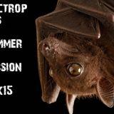 Electropolis Summer Session 2k15