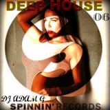 Deep House Sessions 06 Spinnin Records