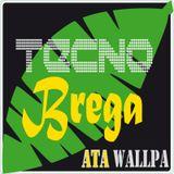 AtawAllpa-TecnoBrega-Set