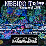 NEBIDO is Everywhere (Party promo mix)