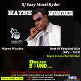 DJ Easy - Wayne Wonder Best Of Greatest Hits (90s - 2003)