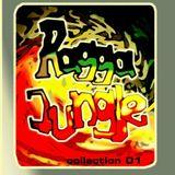 APHRIKKA - mAd4cE - Ragga Jungle Mix 2003