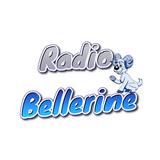 Radio Bellerine - Interview Michaël Dupertuis - La Mine