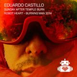 Eduardo Castillo - Robot Heart - Burning Man 2014