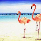 June : A story for flamingos