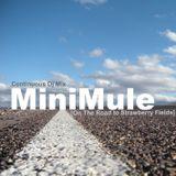MINIMULE-ONTHEROAD