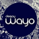 Mix Salsa Vip 2015 [Dj Wayo] Mayo