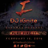 Pure Fire 17 #Mixtape #Rap n #RnB #HipHop Hits #iTunesPodcast @TheRealDJiGnite