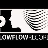 Low Flow Sessions on Proton Radio (exclusive guest mix by Second Skin) - March 21, 2012