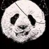 Panda Deep House
