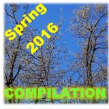 Spring 2016 Compilation