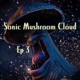 SonicMushroomCloud 30SEP17 KRBX_RadioBoise