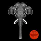 elephant fellini - dopestdope tape #1