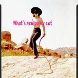 moichi kuwahara What's new pussy cat 0908 396