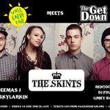 The Skints - Vale Earth Fair Promo Mix - (Reggae, Ska, Roots, Dub)